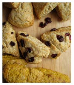 Scones - plain, lemon cranberry and pumpkin spice