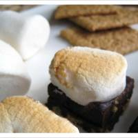 Flee Fly Mosquito - Fudgey S'mores