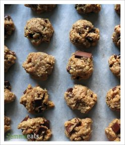 Vegan Oatmeal Chocolate Chip Cherry Bites