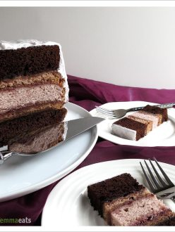 Chocolate and Raspberry Cake with Marshmallow Fluff Frosting